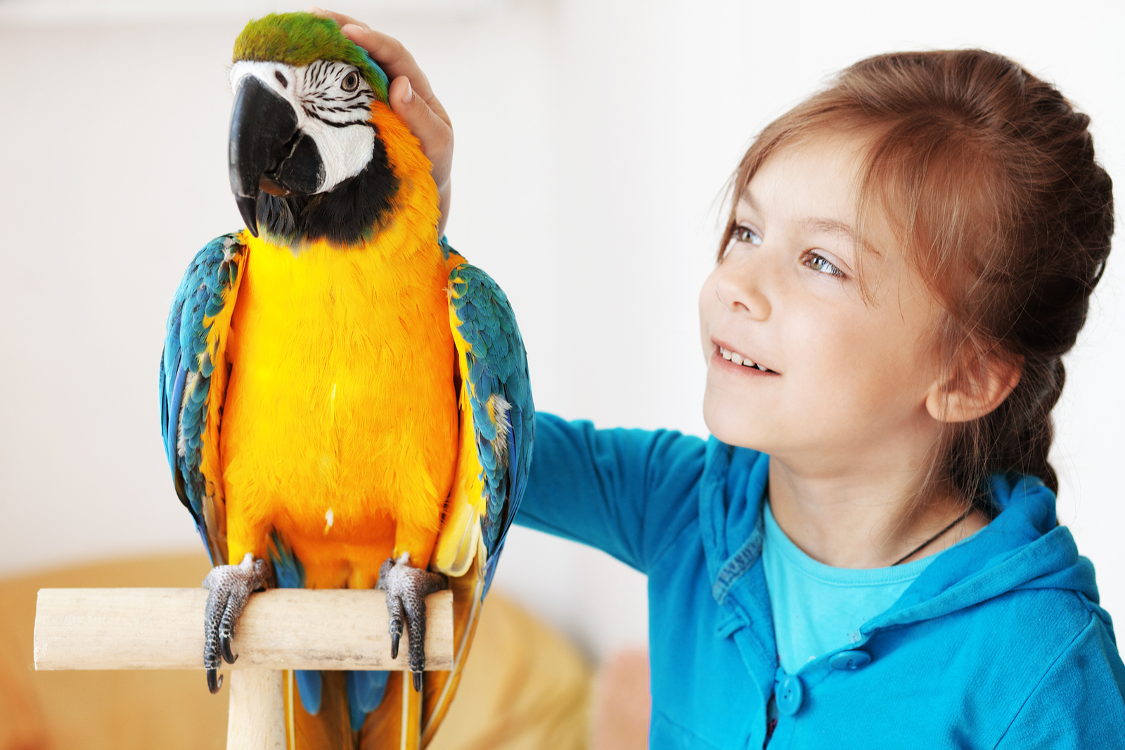 young girl sitting next to a bird